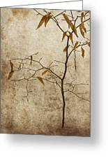Winter Leaves Greeting Card