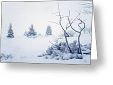 Winter On The Moor Greeting Card