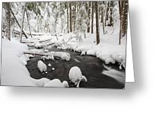 Winter Snow Along Still Creek In Mt Greeting Card