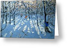 Winter Woodland Near Newhaven Derbyshire Greeting Card