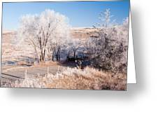 Winters Frosty Dessert Greeting Card