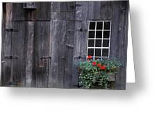 Wooden Building And Window Box Greeting Card