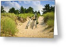 Wooden Stairs Over Dunes At Beach Greeting Card