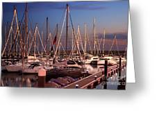 Yacht Marina Greeting Card