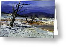 Yellowstone National Park 6 Greeting Card