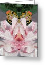 Hibiscus Mystery Greeting Card