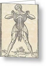 Historical Anatomical Illustration Greeting Card