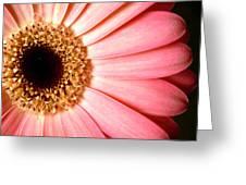 1067.2.c Greeting Card