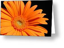 1102c Greeting Card