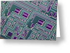 Microchip, Light Micrograph Greeting Card