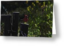 1384 Posted Greeting Card