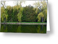 Willow Pond B And B Greeting Card