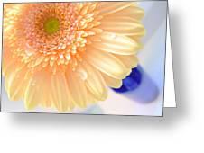 1477-001 Greeting Card