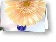 1479c2 Greeting Card