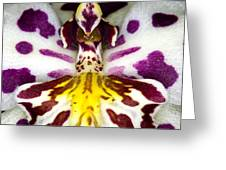 Exotic Orchid Flower Greeting Card by C Ribet