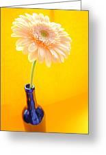 1533-001 Greeting Card