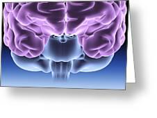 Human Brain, Computer Artwork Greeting Card