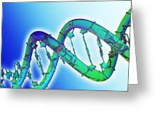 Dna Molecule Greeting Card