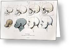 1760a Petrus Camper Facial Angle Eugenics Greeting Card