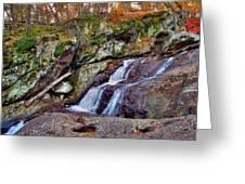 Cunningham Falls Greeting Card