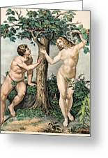 1863 Adam And Eve From Zoology Textbook Greeting Card