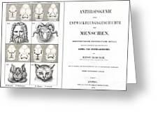 1874 Frontis Haeckel Anthropogenie Greeting Card
