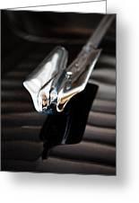 1949 Cadillac Fleetwood 60 Special Greeting Card