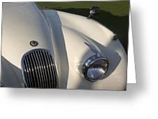 1954 Jaguar Xk 120 Se Roadster Greeting Card