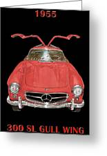 300 S L Gull Wing  Greeting Card