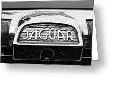 1963 Jaguar Back Up Light Greeting Card