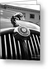1963 Jaguar Front Grill In Balck And White Greeting Card