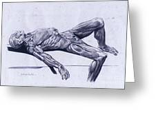 A Flayed Cadaver Greeting Card