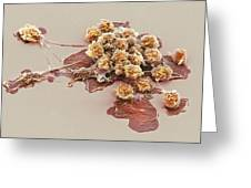 Activated Granulocytes, Sem Greeting Card