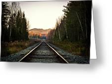Adirondack Tracks Greeting Card