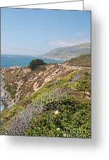 Along Big Sur Greeting Card