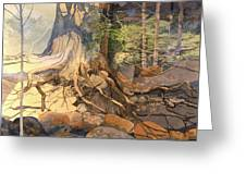 Ancient Witness II Greeting Card