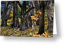 Autumn Landscape Greeting Card by Vladimir Kholostykh