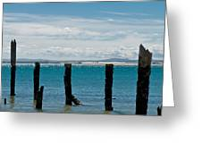 Beautiful Rotten Mooring On A Beach Greeting Card