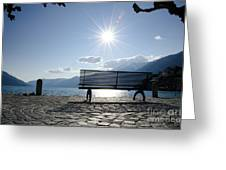 Bench In Backlight Greeting Card
