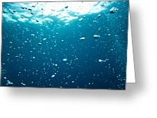 Bubbles Underwater Greeting Card