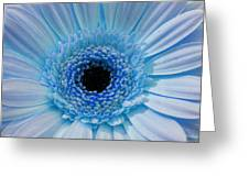 Cheeriest Blue Greeting Card