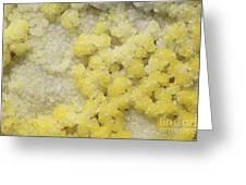 Close-up Of Yellow Salt Crystals Greeting Card