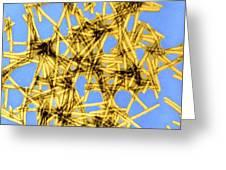 Coloured Tem Of Tobacco Mosaic Virus Greeting Card