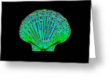 Coloured X-ray Of A Pecten Scallop Shell Greeting Card