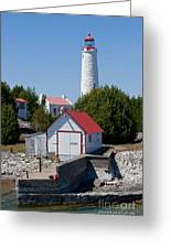 Cove Island Lighthouse Greeting Card