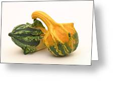 Decorative Squash Greeting Card