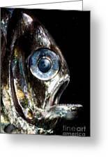 Deep Sea Hatchetfish Greeting Card