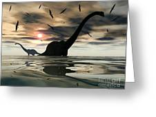 Diplodocus Dinosaurs Bathe In A Large Greeting Card