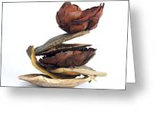 Dried Pieces Of Vegetables.  Greeting Card