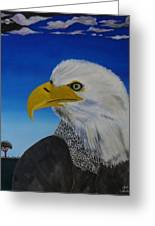 Eagle At Dusk Greeting Card